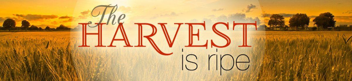 EVANGELIST MINISTRIES INTERNATIONAL